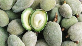 The Bitter Truth: Scientists Sequence the Almond Genome