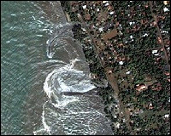 Tsunami Backgrounder