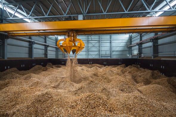 EPA Declares Biomass Plants Carbon Neutral, Amid Scientific Disagreement