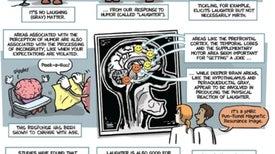 Locating the Brain's Funny Bone