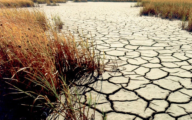 El Niño Could Make U.S. Weather More Extreme during 2014