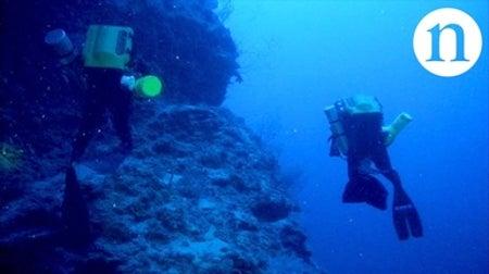 Corals in a Hurricane: Deep Reefs under Threat