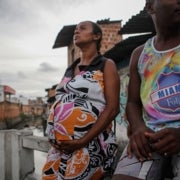 Brazil Scientists Seek to Unravel Mystery of Zika Twins